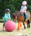 baby poney de 3 à 6 ans