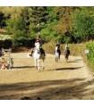 Séjour équitation loisirs poney ou cheval de 6 à 17 ans