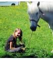 Centre de loisirs équitation & activités à partir de 6 ans