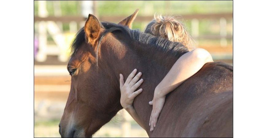 L'équitation, un loisir des plus bénéfiques !